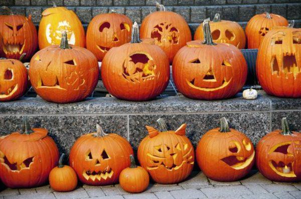 Halloween come far durare di più la zucca di Halloween e conservarla